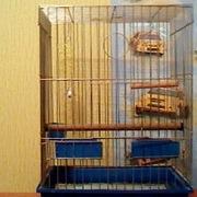Клетка для  большого  попугая большая